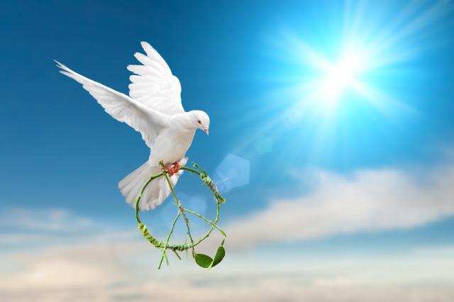 画像に alt 属性が指定されていません。ファイル名: 平和の象徴.jpg